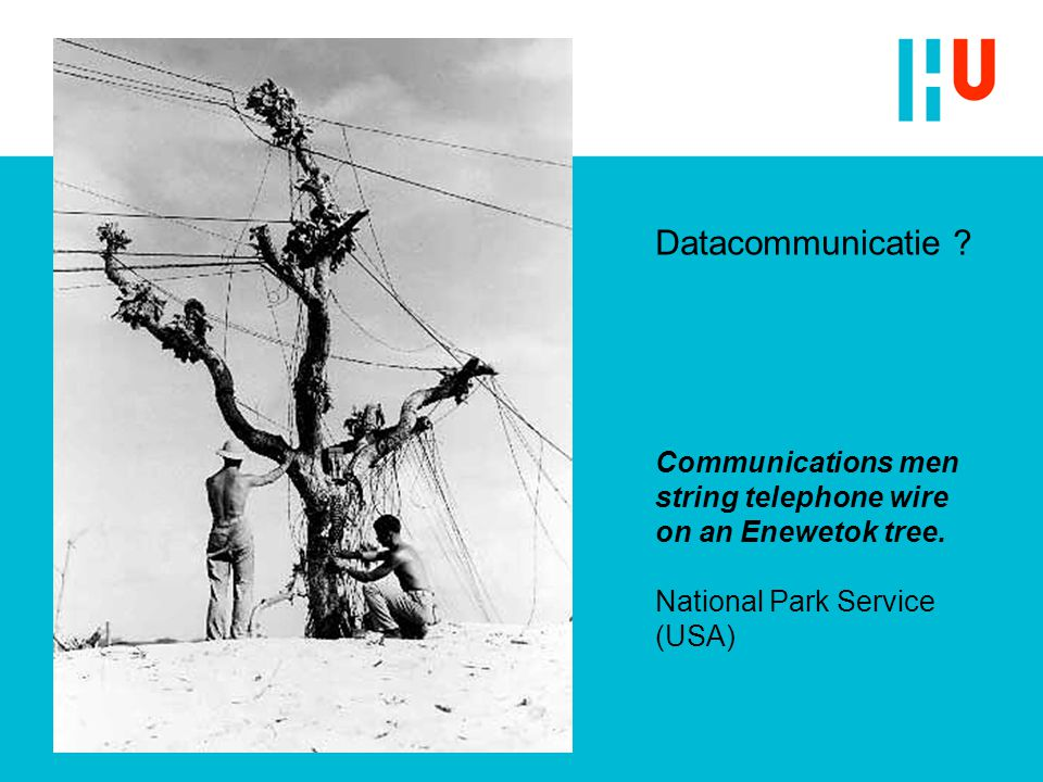 Datacommunicatie. Communications men string telephone wire on an Enewetok tree.