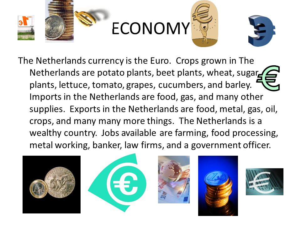 ECONOMY The Netherlands currency is the Euro.