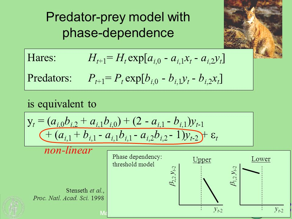 Matematisk Institutt, Oslo (05.04.05) Predator-prey model with phase-dependence Hares:H t+1 = H t exp[a i,0 - a i,1 x t - a i,2 y t ] Predators:P t+1 = P t exp[b i,0 - b i,1 y t - b i,2 x t ] y t = (a i,0 b i,2 + a i,1 b i,0 ) + (2 - a i,1 - b i,1 )y t-1 + (a i,1 + b i,1 - a i,1 b i,1 - a i,2 b i,2 - 1)y t-2 +  t is equivalent to y t-2  2,2 y t-2 y t-2  1,2 y t-2 Lower Upper Phase dependency: threshold model non-linear Stenseth et al., Proc.