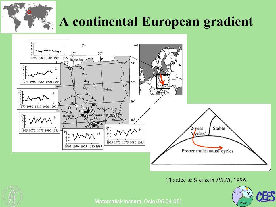 Matematisk Institutt, Oslo (05.04.05) A continental European gradient Tkadlec & Stenseth PRSB, 1996.
