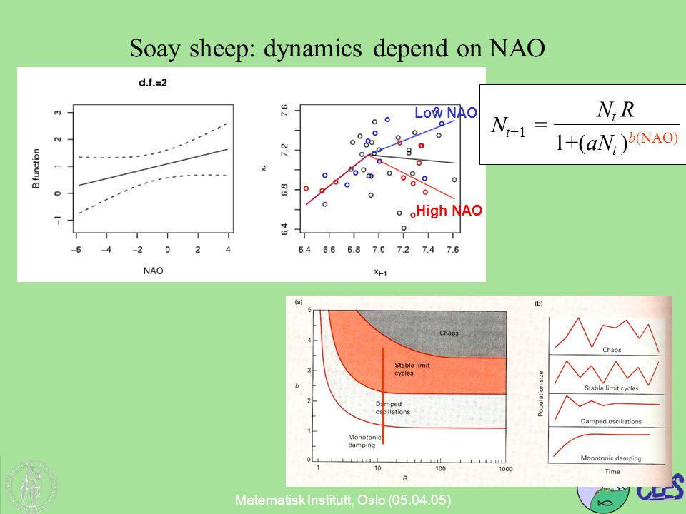 Matematisk Institutt, Oslo (05.04.05) High NAO Low NAO N t+1 = N t R 1+(aN t ) b(NAO) Soay sheep: dynamics depend on NAO
