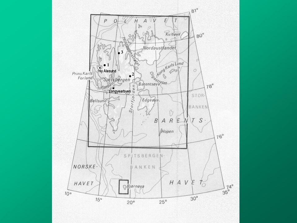 Velocity Field of Isachsenfonna