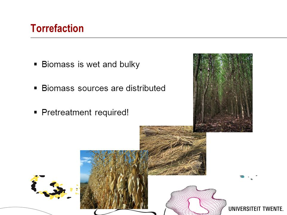 Torrefaction  Biomass is wet and bulky  Biomass sources are distributed  Pretreatment required!