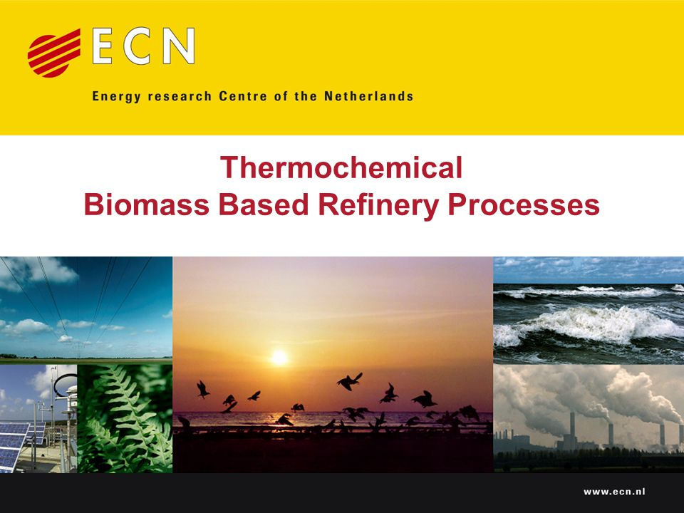 Thermochemical Biomass Based Refinery Processes