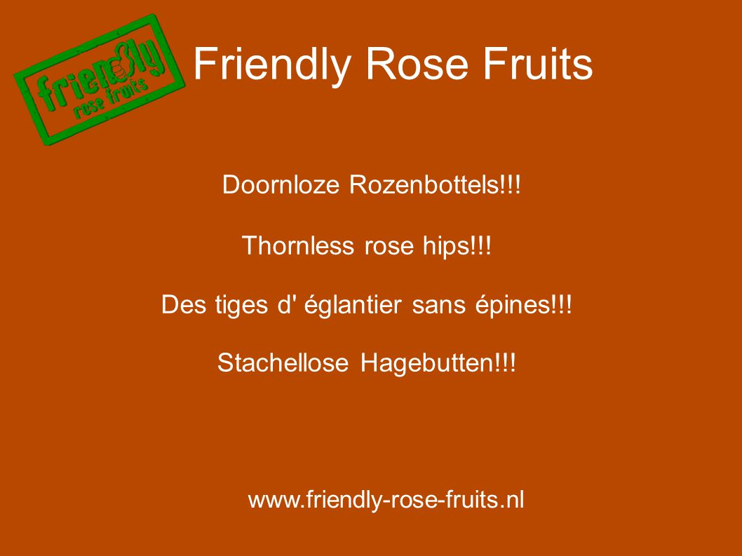 Friendly Rose Fruits www.friendly-rose-fruits.nl Doornloze Rozenbottels!!! Thornless rose hips!!! Des tiges d' églantier sans épines!!! Stachellose Ha