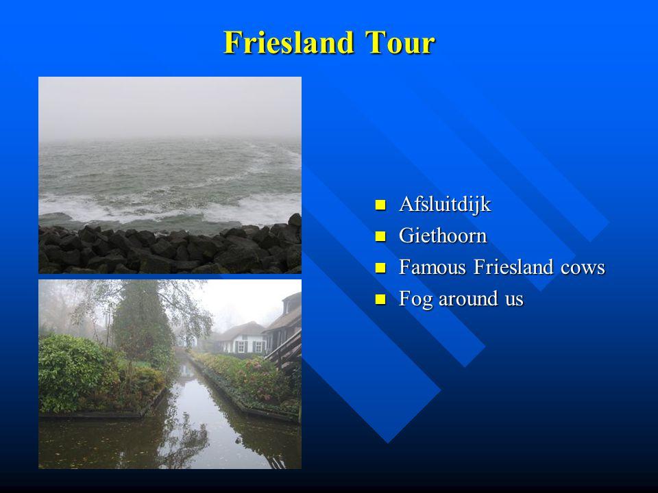 Friesland Tour Afsluitdijk Giethoorn Famous Friesland cows Fog around us