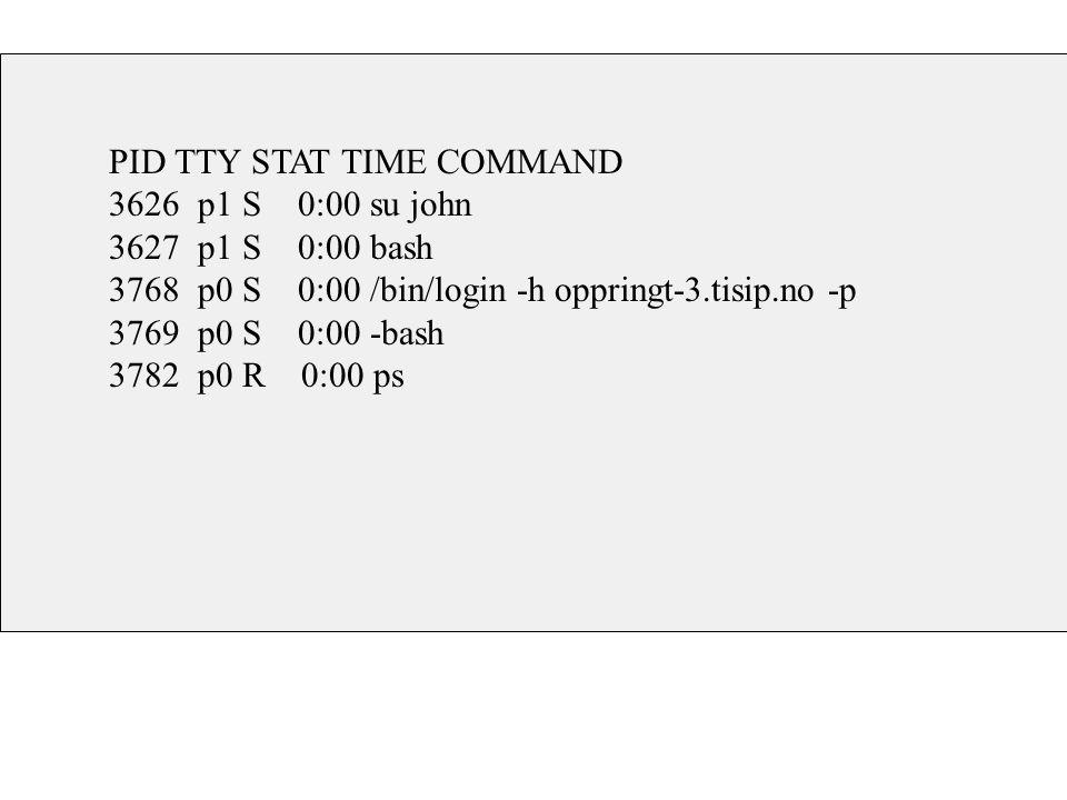 PID TTY STAT TIME COMMAND 3626 p1 S 0:00 su john 3627 p1 S 0:00 bash 3768 p0 S 0:00 /bin/login -h oppringt-3.tisip.no -p 3769 p0 S 0:00 -bash 3782 p0 R 0:00 ps