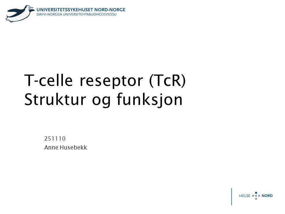 T-celle reseptor (TcR) Struktur og funksjon 251110 Anne Husebekk