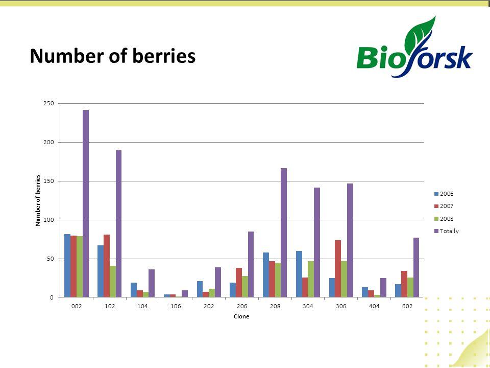 Number of berries