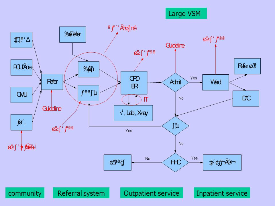 Large VSM communityReferral systemOutpatient serviceInpatient service