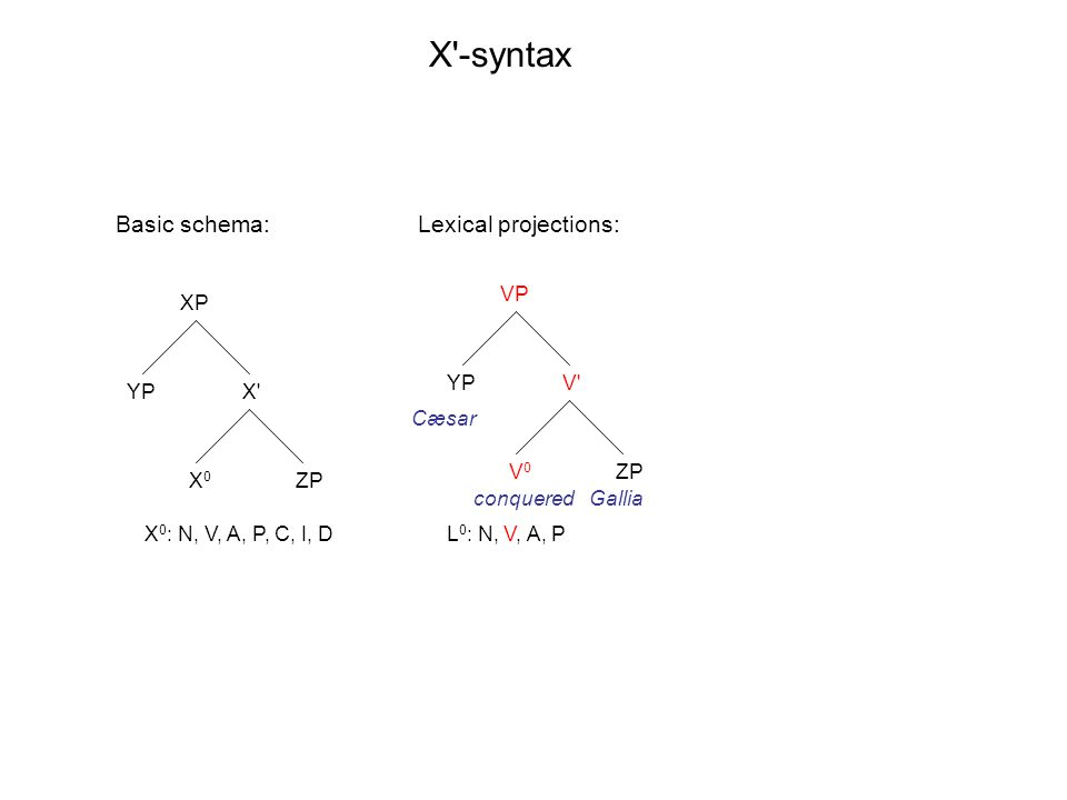 XP X' X0X0 YP ZP VP V' V0V0 YP ZP X'-syntax X 0 : N, V, A, P, C, I, DL 0 : N, V, A, P Basic schema: Cæsar conqueredGallia Lexical projections: