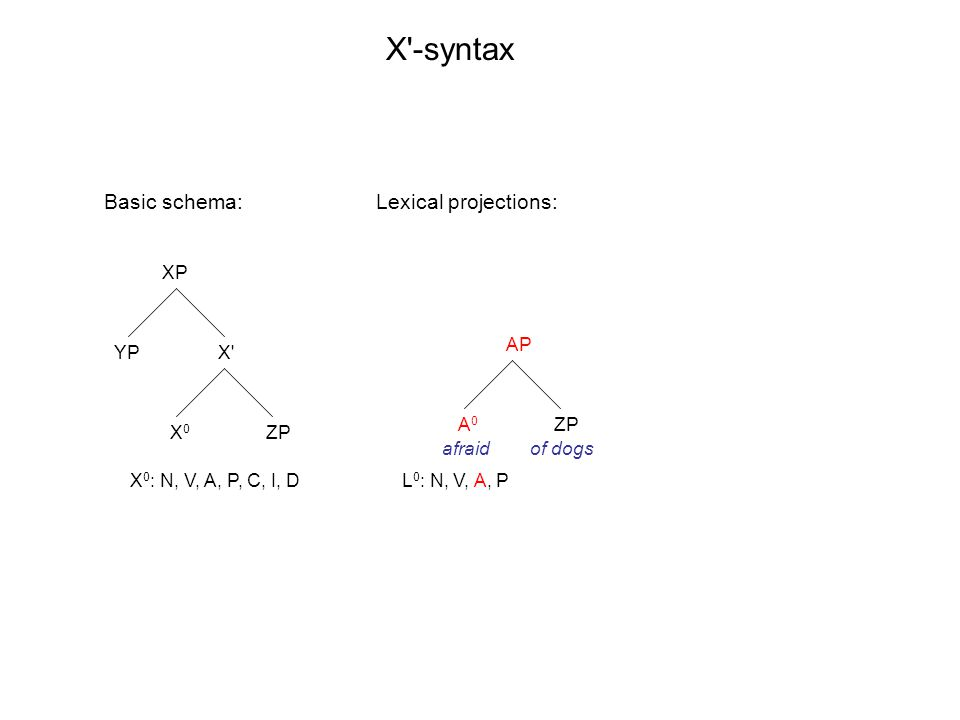 XP X X0X0 YP ZP AP A0A0 ZP X -syntax X 0 : N, V, A, P, C, I, DL 0 : N, V, A, P Basic schema: afraidof dogs Lexical projections: