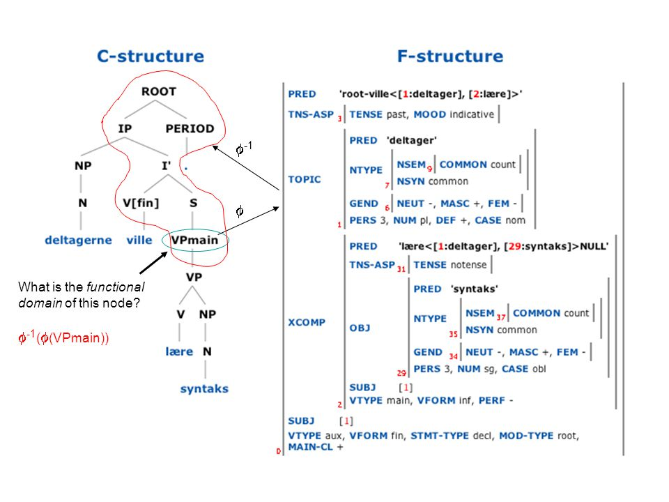 What is the functional domain of this node  -1 (  (VPmain))   -1