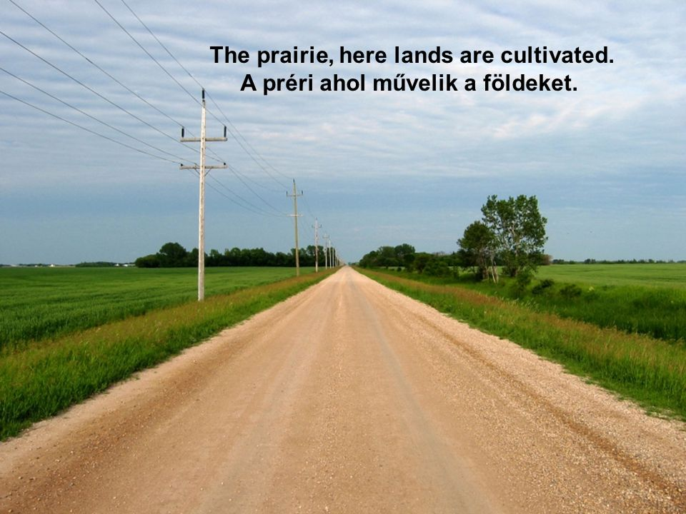 A kanadai préri a sziklás hegységtől a nagytavakig terjed. The Canadian prairie is from the Rocky Mountains to the Great Lakes and her territory ~ 650