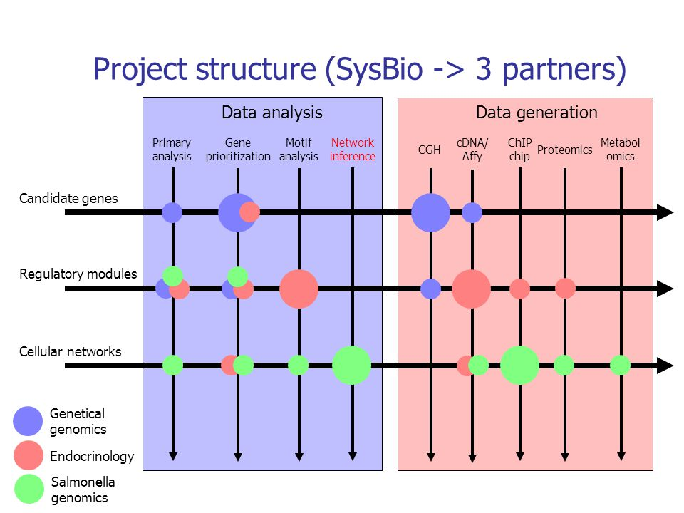 Network inference Motif analysis Primary analysis CGH ChIP chip Proteomics Metabol omics Candidate genes Regulatory modules Cellular networks cDNA/ Af