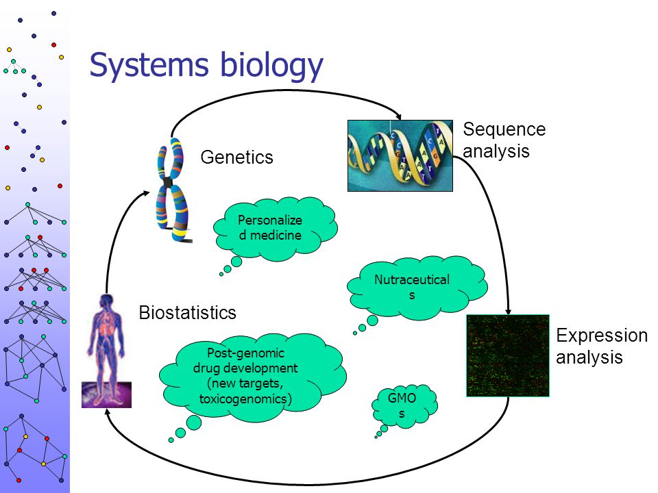Systems biology Biological question & model High-throughput technology Computers & databases Mathematical models