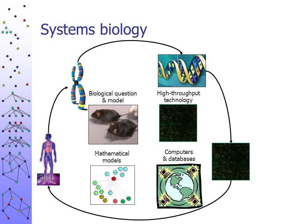 Integrative genomics Regulatory modules Cellular networks Genetical genomics Endocrinology Salmonella genomics Biological problem Experiment design Biological data Data analysis Biological validation Improved method New biology Probabilistic models Research concept & consortium