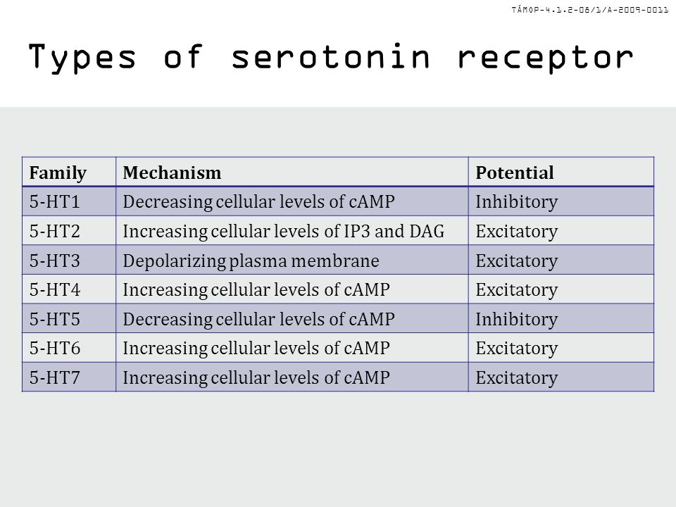 TÁMOP-4.1.2-08/1/A-2009-0011 Types of serotonin receptor FamilyMechanismPotential 5-HT1Decreasing cellular levels of cAMPInhibitory 5-HT2Increasing ce