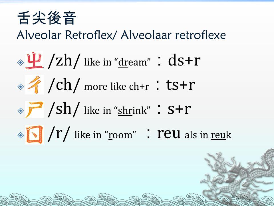 舌尖音 Alveolar/ Alveolaar  ㄗ /z/ like in kids : ds als in broods ㄗ  ㄘ /c/ like in its : ts als in fiets ㄘ  ㄙ /s/ like in sky : s als in slim ㄙ