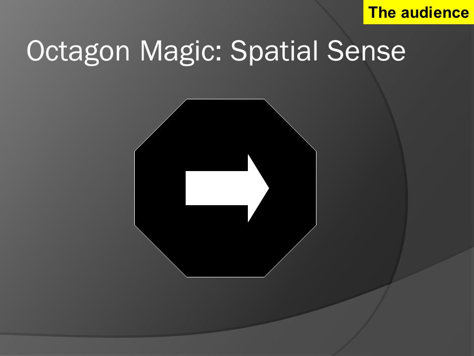 Octagon Magic: Spatial Sense The audience