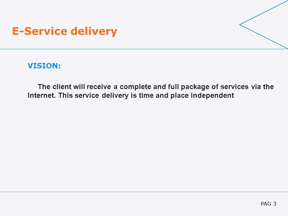 PAG 3 E-Service delivery VISION: The client will receive a complete and full package of services via the Internet. This service delivery is time and p