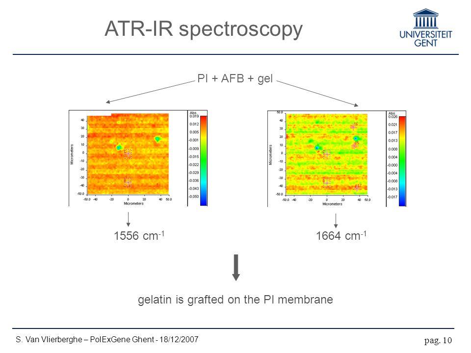 ATR-IR spectroscopy S. Van Vlierberghe – PolExGene Ghent - 18/12/2007 pag. 10 1556 cm -1 1664 cm -1 gelatin is grafted on the PI membrane PI + AFB + g