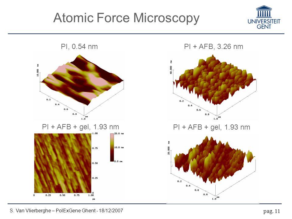 Atomic Force Microscopy S. Van Vlierberghe – PolExGene Ghent - 18/12/2007 pag. 11 PI, 0.54 nmPI + AFB, 3.26 nm PI + AFB + gel, 1.93 nm