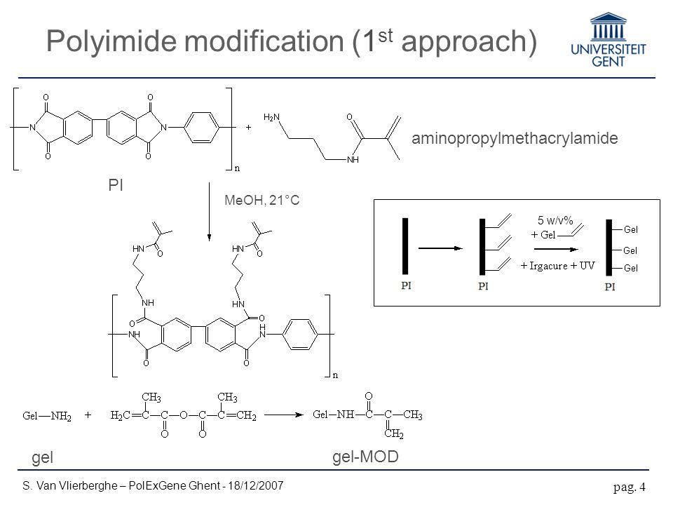 Polyimide modification (1 st approach) S. Van Vlierberghe – PolExGene Ghent - 18/12/2007 pag.