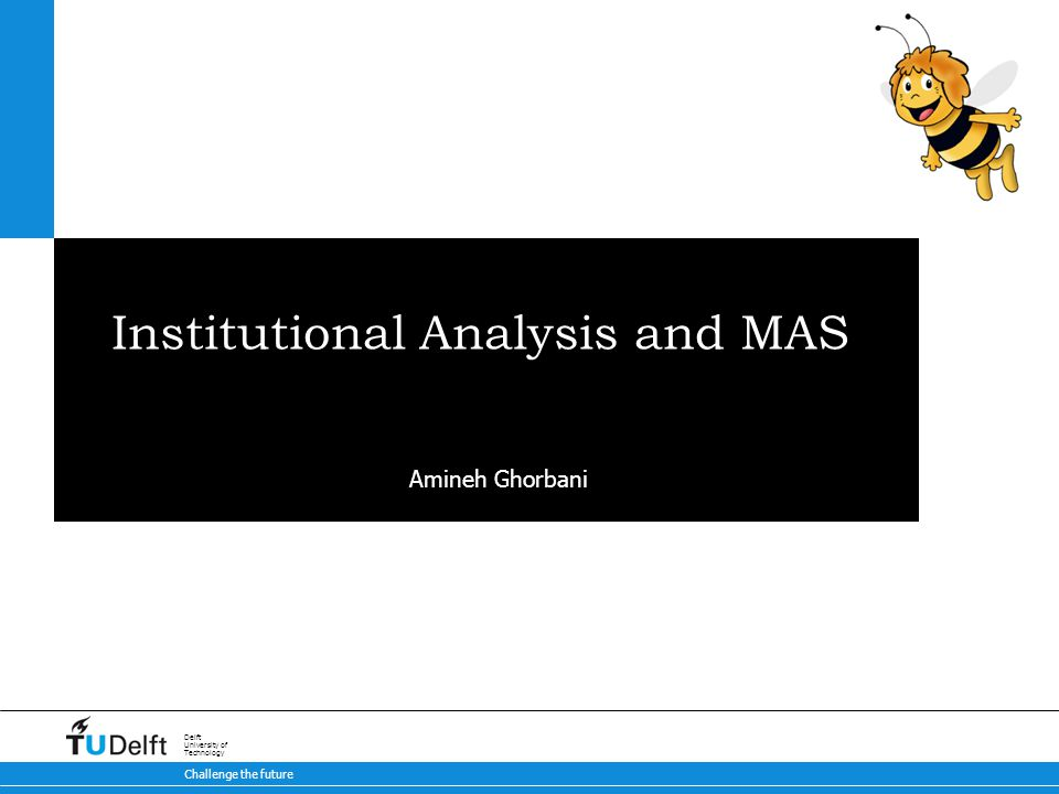 Challenge the future Delft University of Technology Institutional Analysis and MAS Amineh Ghorbani