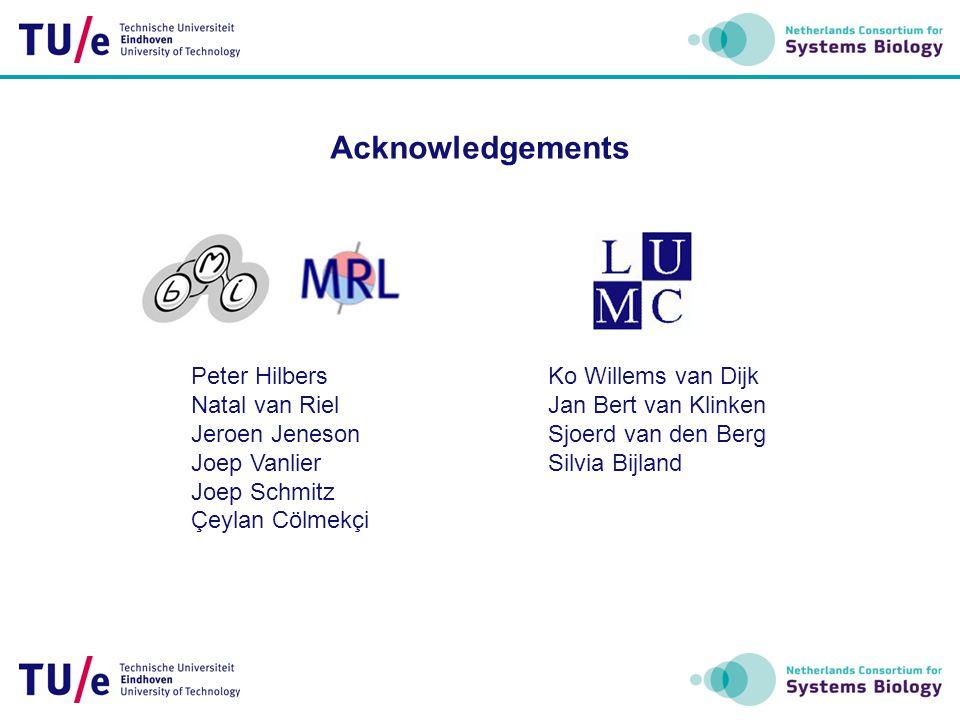 Acknowledgements Peter Hilbers Natal van Riel Jeroen Jeneson Joep Vanlier Joep Schmitz Çeylan Cölmekçi Ko Willems van Dijk Jan Bert van Klinken Sjoerd