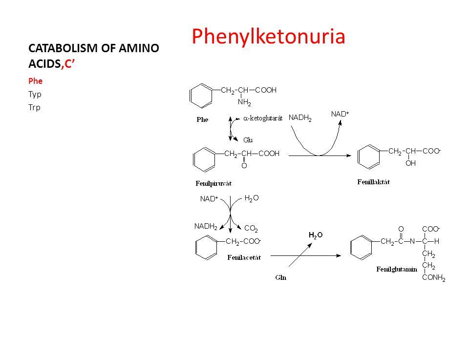 CATABOLISM OF AMINO ACIDS'C' Phe Typ Trp Phenylketonuria