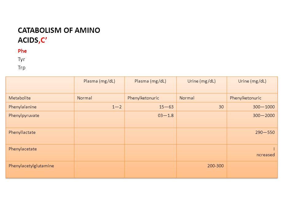 CATABOLISM OF AMINO ACIDS'C' Phe Tyr Trp