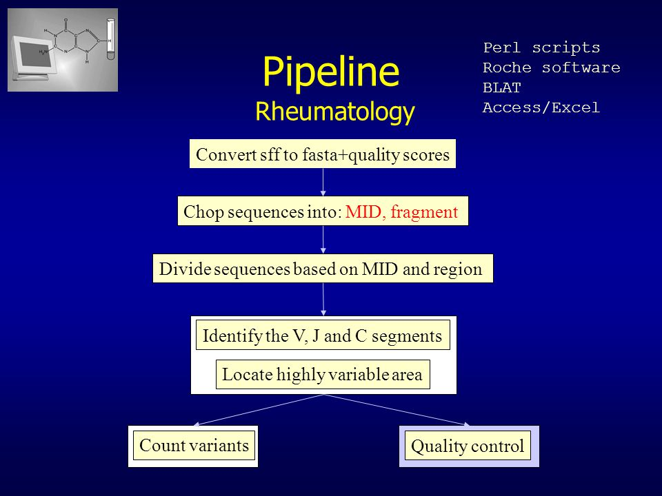 Pipeline Rheumatology Convert sff to fasta+quality scores Chop sequences into: MID, fragment Divide sequences based on MID and region Identify the V, J and C segments Locate highly variable area Count variants Quality control Perl scripts Roche software BLAT Access/Excel