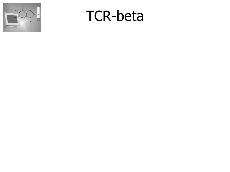 Recombinatie van gensegmenten : Vanuit de germline: - Van ieder gensegment wordt 1 variant geselecteerd -Deze worden aan elkaar gekoppeld Alleen functionele recombinaties leiden tot functionele T-cellen Paul Klarenbeek