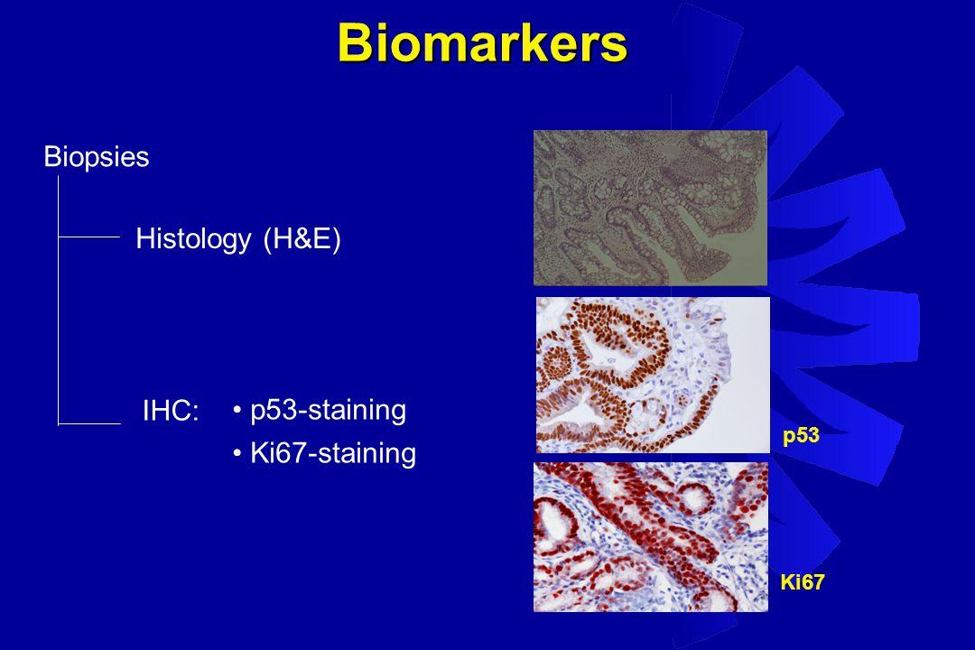 Biopsies Histology (H&E) IHC: p53-staining Ki67-staining p53 Ki67 Biomarkers