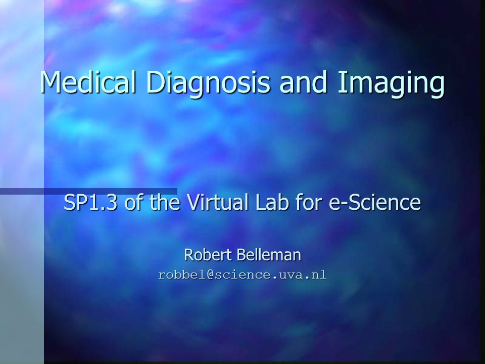 Medical Diagnosis and Imaging SP1.3 of the Virtual Lab for e-Science Robert Belleman robbel@science.uva.nl