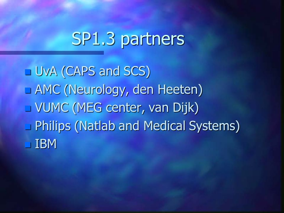 SP1.3 partners n UvA (CAPS and SCS) n AMC (Neurology, den Heeten) n VUMC (MEG center, van Dijk) n Philips (Natlab and Medical Systems) n IBM