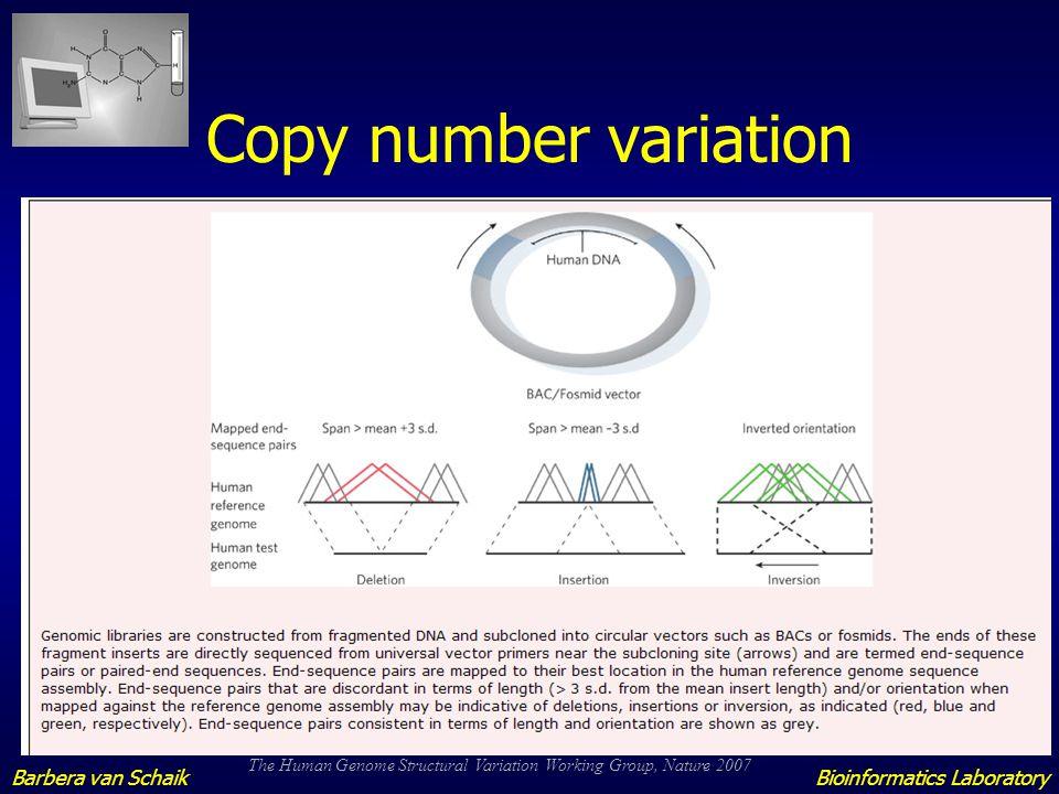 SNP/Haplotype analysis Linkage studies Forensic research Bioinformatics LaboratoryBarbera van Schaik