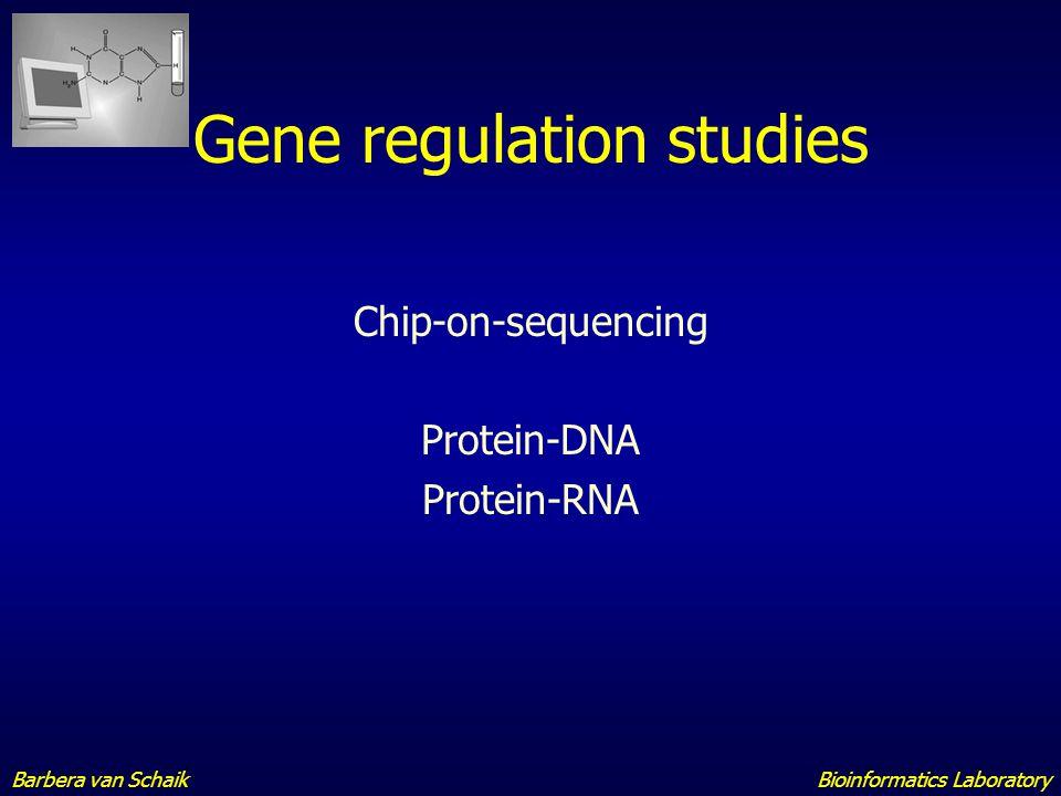 Chip-seq Bioinformatics LaboratoryBarbera van Schaik
