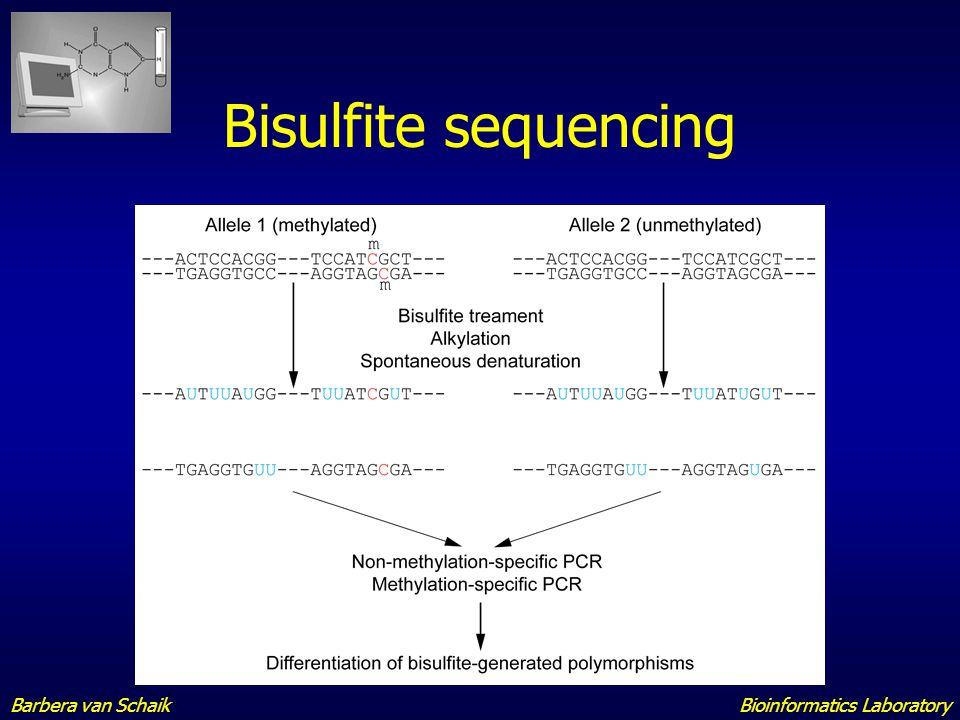 Paleogenomics Sequencing of ancient DNA Mummies Sabretooth Mammoth Neanderthal Bioinformatics LaboratoryBarbera van Schaik