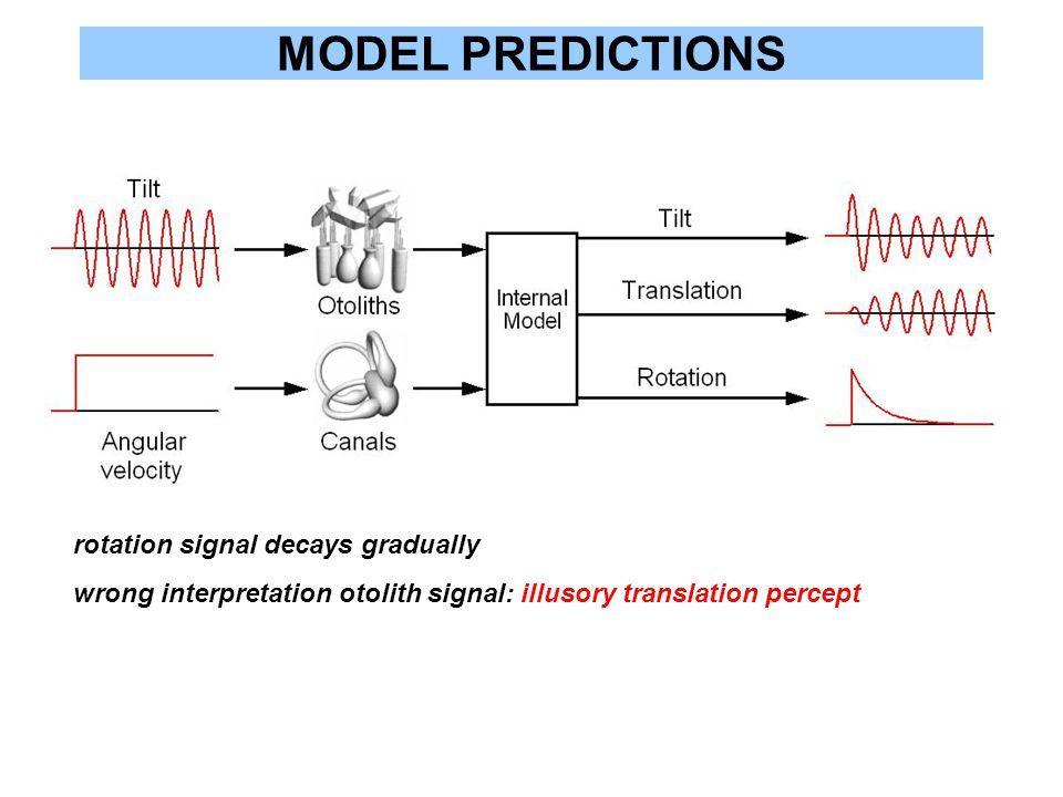 MODEL PREDICTIONS rotation signal decays gradually wrong interpretation otolith signal: illusory translation percept