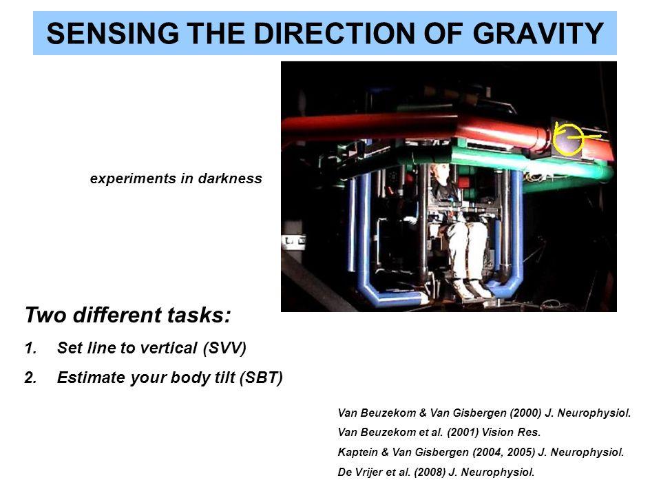 SENSING THE DIRECTION OF GRAVITY Two different tasks: 1.Set line to vertical (SVV) 2.Estimate your body tilt (SBT) Van Beuzekom & Van Gisbergen (2000)