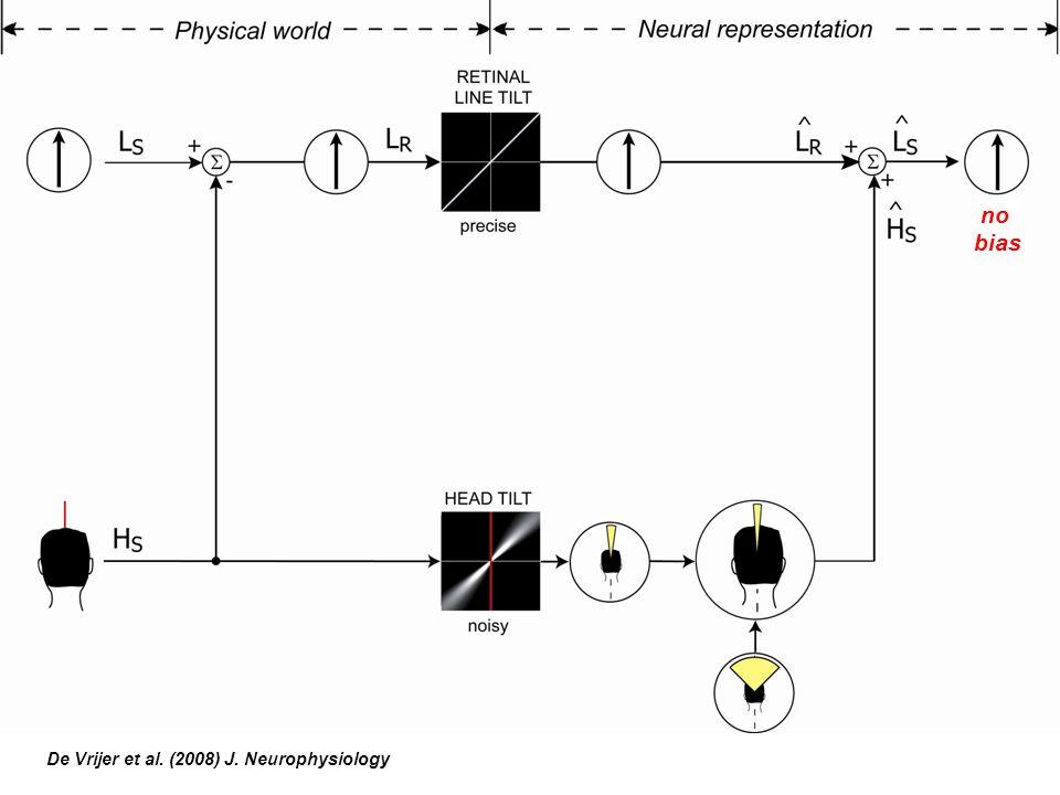 no bias De Vrijer et al. (2008) J. Neurophysiology no bias