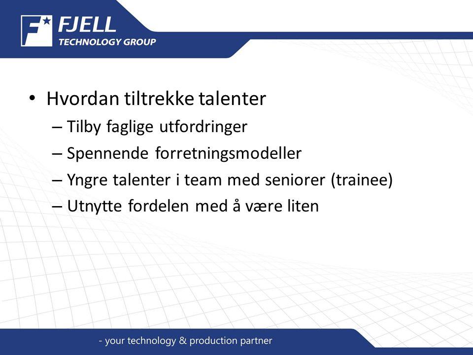 Hvordan tiltrekke talenter – Tilby faglige utfordringer – Spennende forretningsmodeller – Yngre talenter i team med seniorer (trainee) – Utnytte fordelen med å være liten
