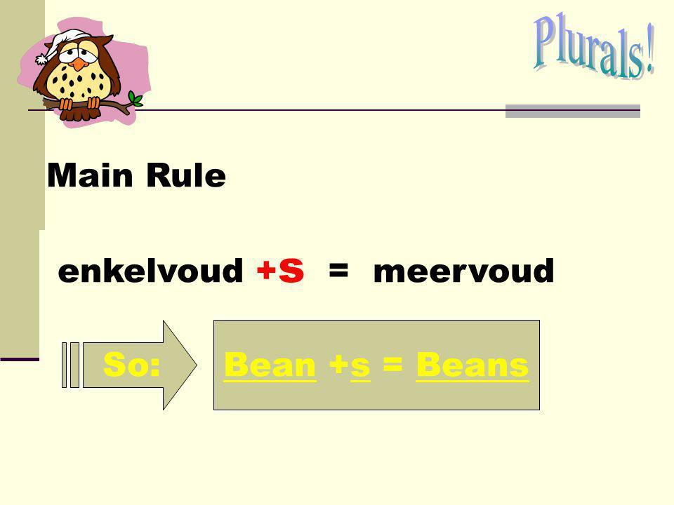 Main Rule enkelvoud + s = meervoud So: Bean +s = Beans