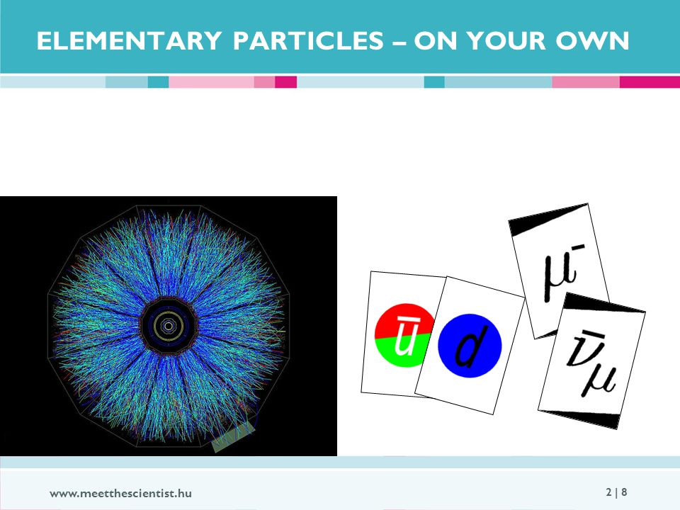 www.meetthescientist.hu 2 | 8 ELEMENTARY PARTICLES – ON YOUR OWN