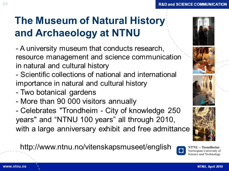60 NTNU, April 2010 R&D and SCIENCE COMMUNICATION The Museum of Natural History and Archaeology at NTNU - A university museum that conducts research, resource management and science communication in natural and cultural history - Scientific collections of national and international importance in natural and cultural history - Two botanical gardens - More than 90 000 visitors annually - Celebrates Trondheim - City of knowledge 250 years and NTNU 100 years all through 2010, with a large anniversary exhibit and free admittance http://www.ntnu.no/vitenskapsmuseet/english
