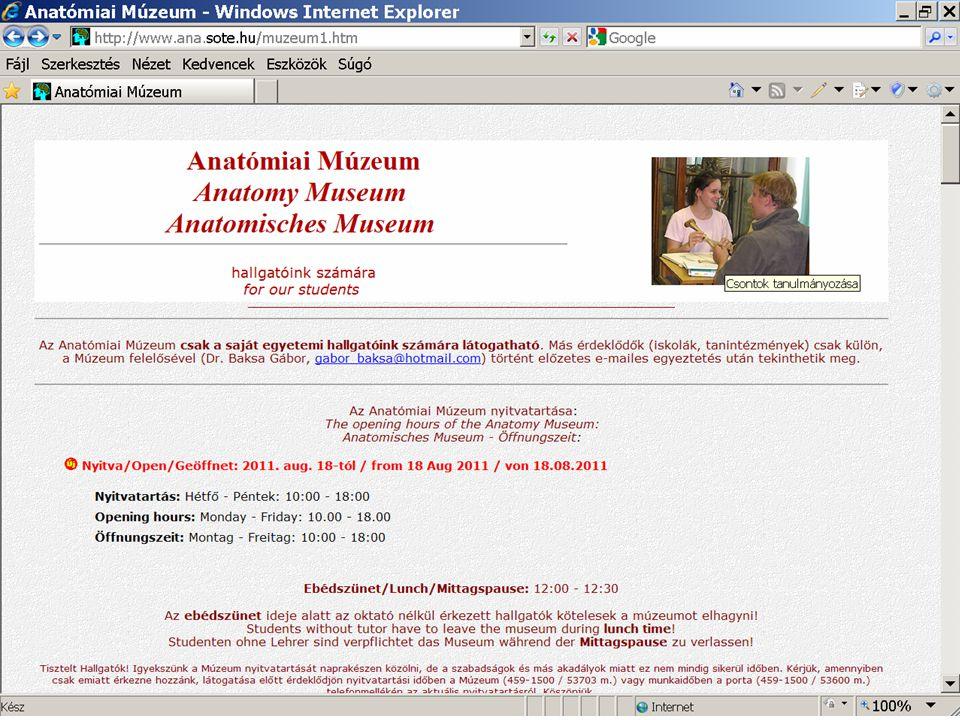 Großzügig Anatomie Und Physiologie Lehrer Websites Ideen ...