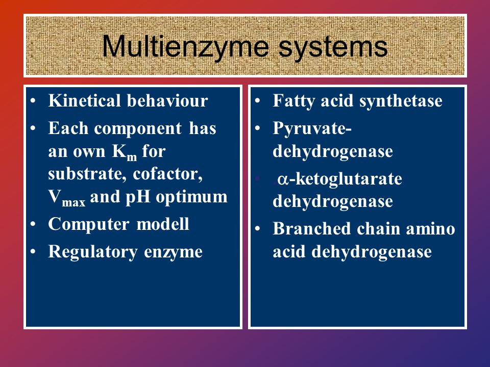 Kinetical behaviour Each component has an own K m for substrate, cofactor, V max and pH optimum Computer modell Regulatory enzyme Fatty acid synthetase Pyruvate- dehydrogenase.