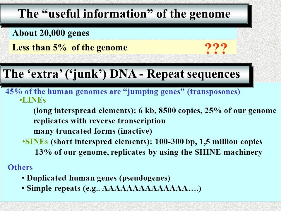 Rec DNA II.16 http://www.ncbi.nlm.nih.gov/entrez/query.fcgi db=gene&cmd=retrieve&dopt=default&list_uids=1815 Internet séta Exon – intron structure Exon (red box) – intron (red line) structure of a gene Direction of transcription